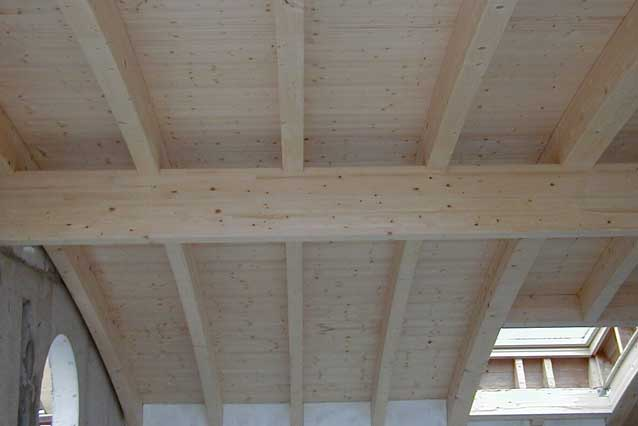 Hochwertige und filigrane Dachgaube